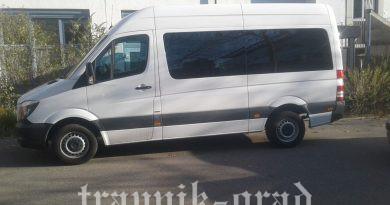 """Norveški humanitarac osigurao minibus za Udruženje """"Sreća za sve"""""""
